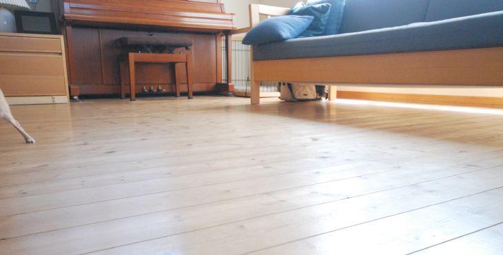 パイン材の床